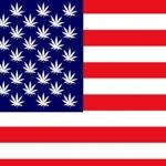 I Risultati dei Referendum negli USA sulla Cannabis