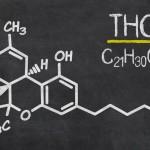 Studio: THC per il trattamento della spasticità nei bambini
