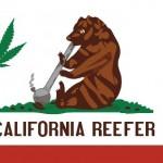 In California ora è legale la coltivazione, il consumo, la vendita: La Capitale della Cannabis nel mondo prende forma