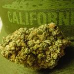 """Un """"Errore"""" nella Legalizzazione Californiana porta l'esenzione delle tasse per i pazienti fino al 2018"""