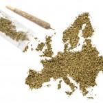 Perchè l'Europa non può legalizzare la Cannabis come negli USA?