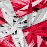 In Danimarca gli Agricoltori premono per coltivare cannabis per distribuzione medica