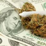 Aumento delle Vendite in USA: il Business della Cannabis pronto ad arrivare in Europa