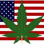 Proiezioni Referendum USA sulla Cannabis – Apertura dei seggi