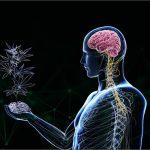 Cannabis e Benessere: la ricerca della felicità