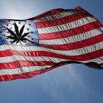 Il Congresso degli Usa conferma la validità delle leggi statali sulla cannabis medica