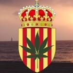 La Catalogna procede verso la regolamentazione legislativa dei CSC