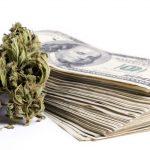L'Oregon ha raccolto oltre 54 milioni di dollari dalla Tassazione sulla vendita legale di cannabis nel 2016