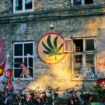 Copenaghen preme per la legalizzazione della Cannabis