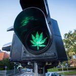 Regolamentazione della Cannabis porta a diminuzione di mortalità negli incidenti stradali