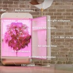 Video: Seedo, il Robot intelligente per coltivare cannabis a casa propria