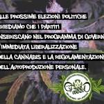 Elezioni anticipate? Occorre iniziare a premere per una Riforma sulla Cannabis