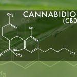 Il Regno Unito regolamenta il CBD a livello medico