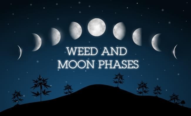 La Luna e la Coltivazione di Cannabis