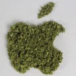 Niente Cannabis: il nuovo Vaporizzatore della Apple serve per un processo litografico