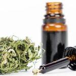 Medical Cannabis: le novità del 2017 a livello di prescrizione ed approvvigionamento sanitario