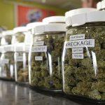 Colorado: $ 1,3 miliardi dalla Cannabis legale venduta nel 2016, di cui $ 200 milioni vanno allo Stato