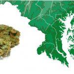 In Maryland si propone la regolamentazione della Cannabis tramite autocoltivazione, vendita e tassazione
