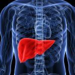 Cannabis per trattare sintomi dell'Epatite C
