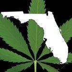 Depositato in Florida un disegno di legge che depenalizzerebbe il Consumo di Cannabis