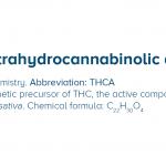 Alla scoperta del THCA