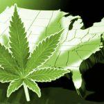 Stati Uniti: il Senato approva all'unanimità una risoluzione che riconosce il potenziale economico della Cannabis ad uso Industriale