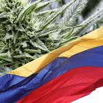 In Colombia ciascuna persona potrà crescere fino a 20 piante di cannabis per uso medico