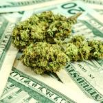 """Gli Stati Uniti toccano il tetto di 200.000 lavoratori della """"Cannabis"""""""
