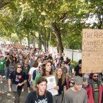 La Corte Suprema del Sudafrica autorizza la Cannabis per uso personale