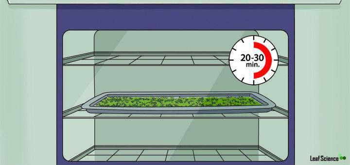 Come decarbossilare la Cannabis – una pratica guida in 6 passaggi