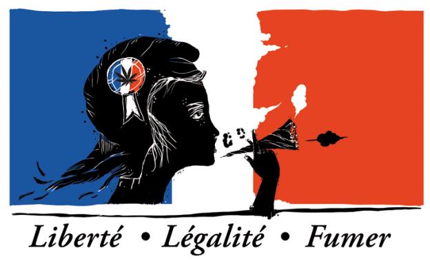 La Francia muove i primi passi verso la Depenalizzazione della Cannabis