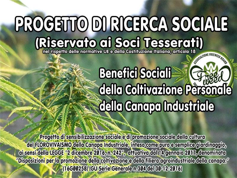 """Progetto di Ricerca Sociale RISERVATO AI SOCI TESSERATI: Coltiva la tua """"Canapa Industriale"""" per Florovivaismo"""