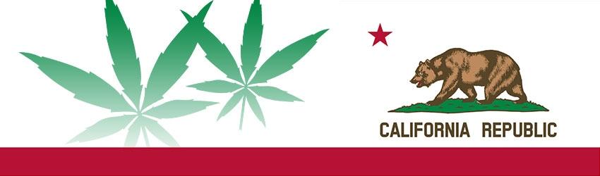 Studio: Il mercato della Cannabis ad uso ricreativo in California vale 5.000 milioni di dollari