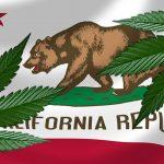La California prova una manovra per tutelarsi dalla Legge Federale sulla Cannabis