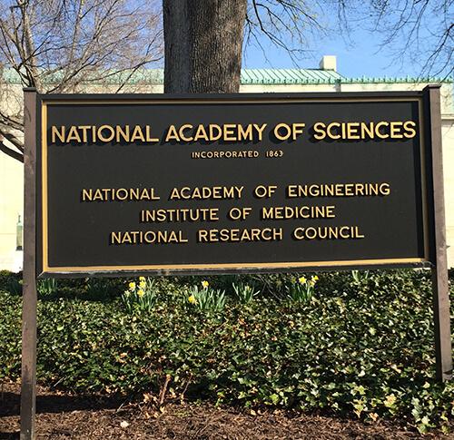 Stati Uniti: La National Academy of Sciences ritiene che la Cannabis sia un trattamento efficace e sicuro