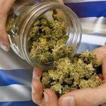 Dall'Uruguay parte il cambiamento: Cannabis Ricreativa in Farmacia a 1,30 dollari al grammo – Ecco tutti i dati