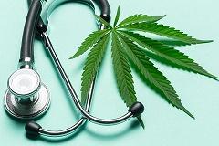 Lista medici prescrittori cannabis