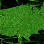 La legge che depenalizza la cannabis entra oggi in vigore nel New Hampshire