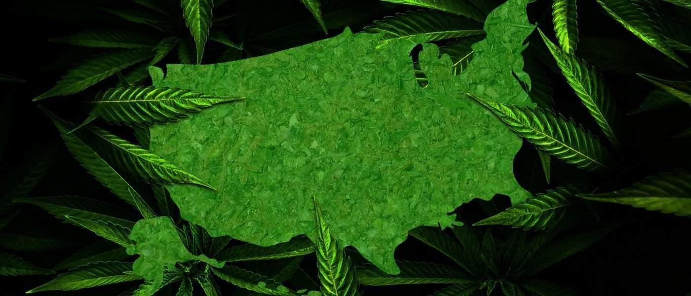 usa weed