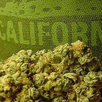 Il Governatore della California blocca la legge che avrebbe vietato di fumare nei parchi e nelle spiagge