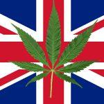 Regno Unito: il Parlamento ha votato all'unanimità per legalizzare la cannabis ad uso medico