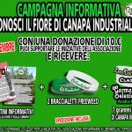 """Campagna Informativa """"Conosci il Fiore di Canapa Industriale"""""""