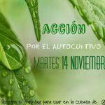 #ProtocoloMaria: Dalle Associazioni spagnole riparte la mobilitazione social a favore dell'autocoltivazione