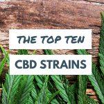 Gli Strain con più alto contenuto di CBD (classifica 2017)
