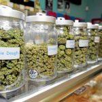 Il Consiglio Comunale di Los Angeles approva il regolamento per i negozi di cannabis