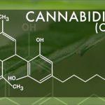 L'ONU afferma che il CBD non dovrà essere inserito nelle sostanze controllate