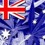 Questa settimana in Nuova Zelanda si regolamenterà la Cannabis ad uso medico