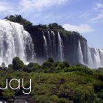 Il Congresso del Paraguay approva una nuova regolamentazione per la cannabis ad uso medico