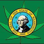 Lo Stato di Washington vuole proteggere l'industria legale della cannabis
