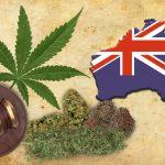 Australia pronta ad esportare cannabis ad uso medico, l'Italia non ha scorte nemmeno per sé stessa